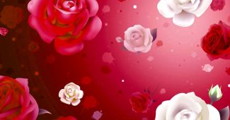 Red Rose Valentine Background for Powerpoint