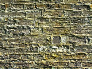 HDR Wall Background