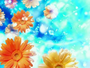 Orange Flower With Blue Sky Powerpoint Background