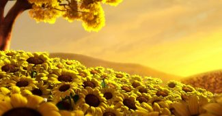 Sunflower 3D Background